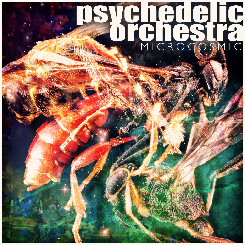 PsychedelicOrchestra_Microcosmic